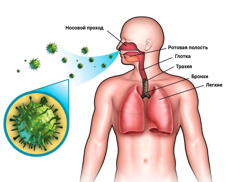 Передача туберкулеза воздушно-капельным путем