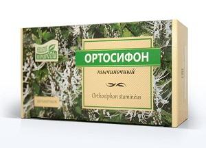 правила применения тычиночного почечного чая Ортосифон