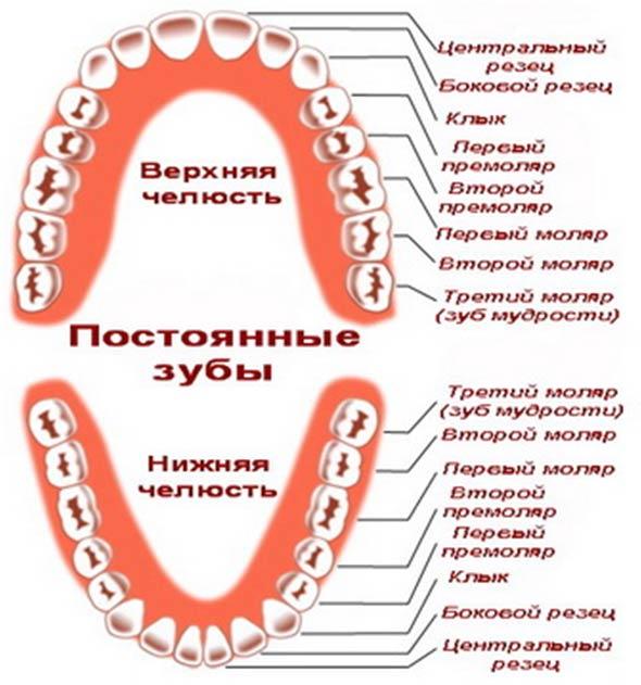 Опасные последствия удаления коренного зуба