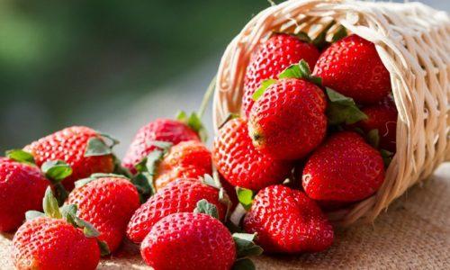 Благодаря своим свойствам клубника считается не только ценным продуктом, но и лекарством, оказывающим благотворное влияние на весь организм человека
