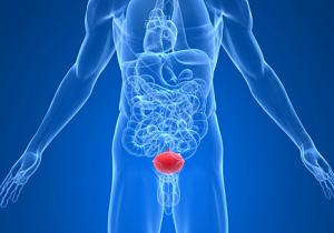 мочевой пузырь воспаление у женщин лечение симптомы