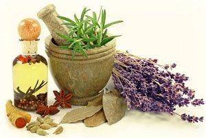 травы для народных средств лечения