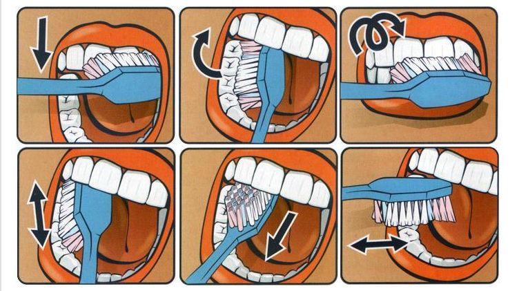 Вечный вопрос: когда чистить зубы до завтрака или после? Не все так однозначно