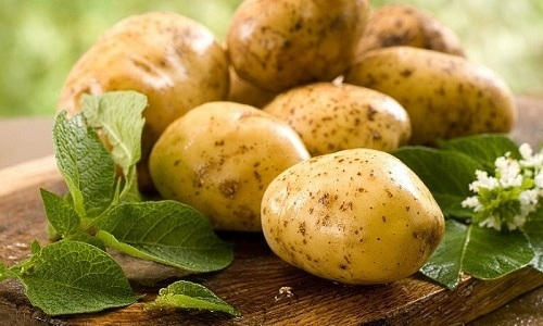 Картофель при панкреатите полезен как в качестве диетического, так и обладающего лечебными свойствами продукта