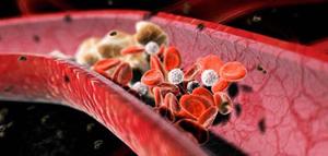 солнечная радиация влияет на расширение кровеносных сосудов