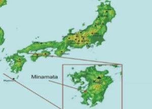 бухта Минамата — карта