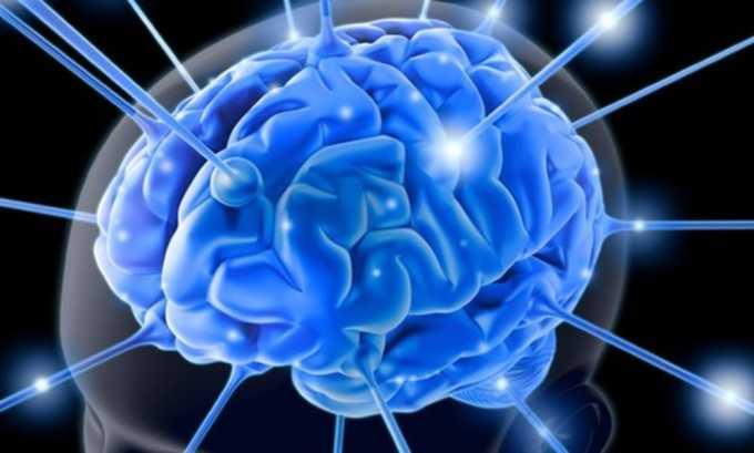 Яйца улучшают работу мозговых клеток