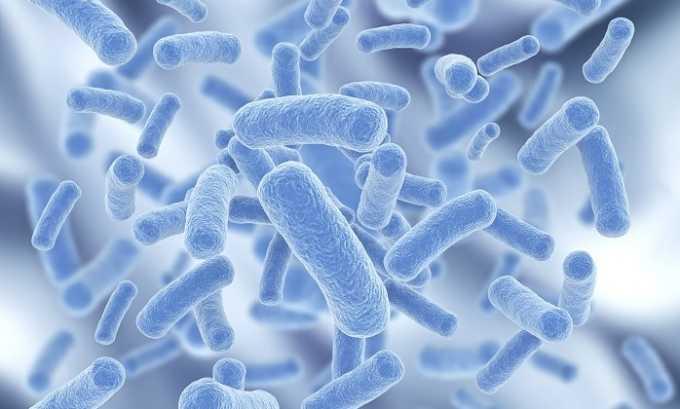 Мандарины помогают бороться с бактериями, что крайне важно при заболевании поджелудочной железы