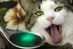 дозировка лекарства для кошек