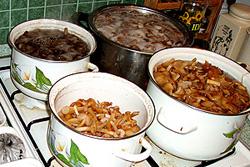 термическая обработка грибов