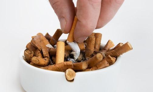 где содержится никотин