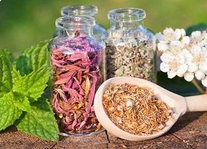 перечень и правила применения мочегонных трав