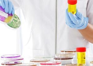 как лечить бактериурию