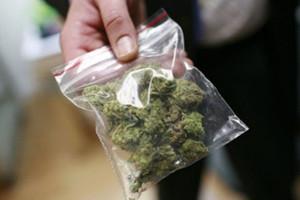 действие марихуаны