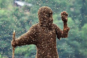 как уберечься от укуса осы