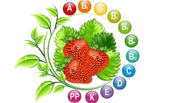 Ценность спелой клубники (садовой земляники) состоит в содержании в ее составе большого количества: клетчатки, набора витаминов, минеральных веществ