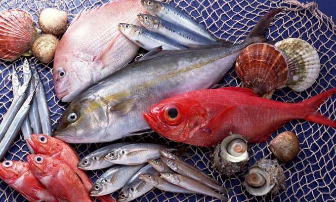 Необходимо исключить все жирные разновидности рыб
