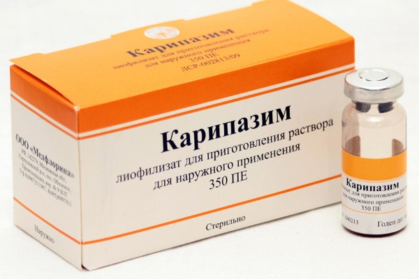 Карипазим обладает некролитическим действием