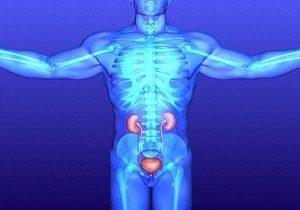 лекарство от воспаления мочевого пузыря