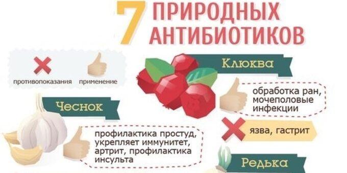 Топ-7 природных антибиотиков
